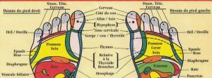 réflexologie plantaire normandie